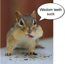 wisdom-teeth-suck